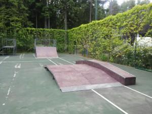 Фан-бокс в скейт-парке в поселке Горки-10